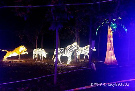 Jiaozuoshi Senlin Gongyuan Tongxing Zoo