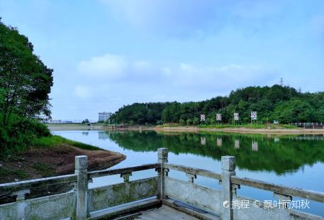 Taihe Forest Park