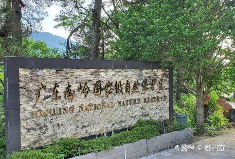 Guangdong Nanling National Nature Reserves