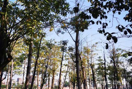 Shilong Jinsha Park