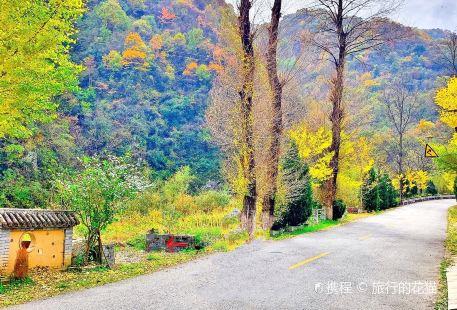 Niubeiliang Mountain Nature Reserve
