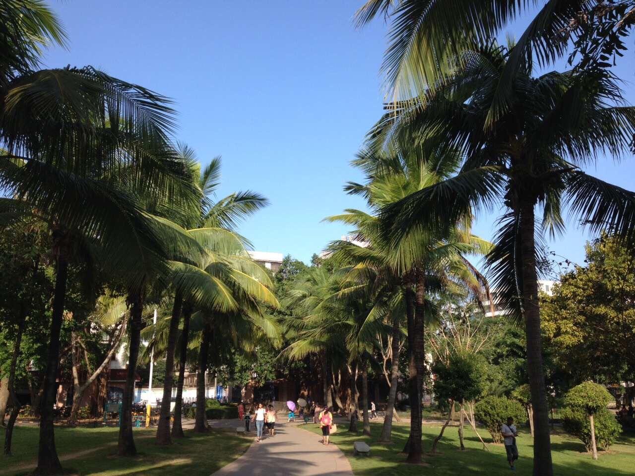 茂名森林公園