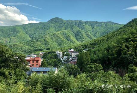 Huzhou Bowulong Tam