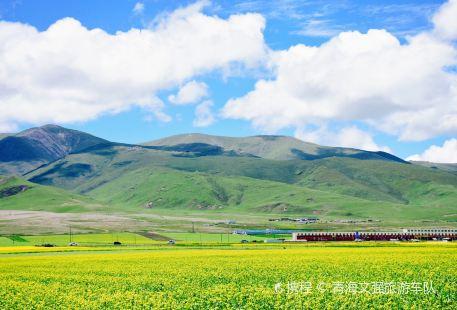 Qinghaihu Fishing Farm