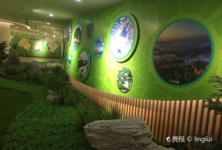Weifang City Planning Art Center