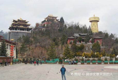 Zhongxin zhen gong tang