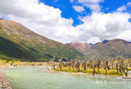 熱振國家森林公園