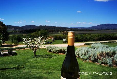 Lowe Wines