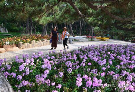 Baoer Road