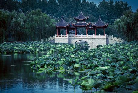 Nanzhou Park