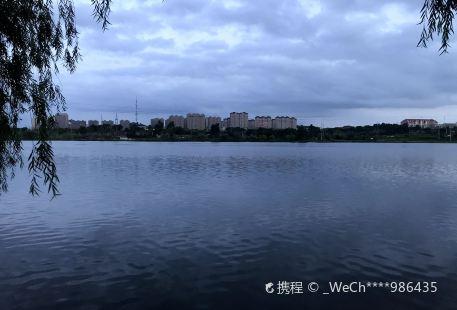 遼源國家礦山濕地公園