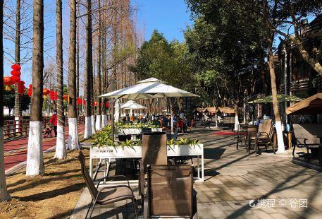 Anjingshuxiu Park