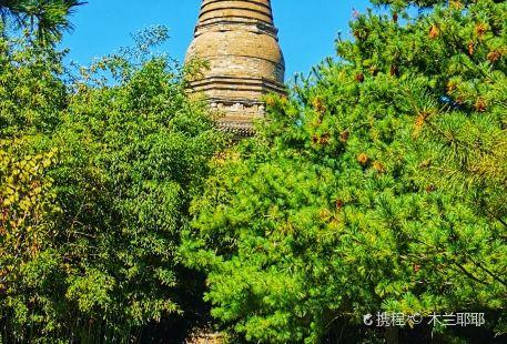 Yunju Temple · Shijingshan