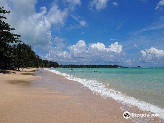 Coconut Beach1