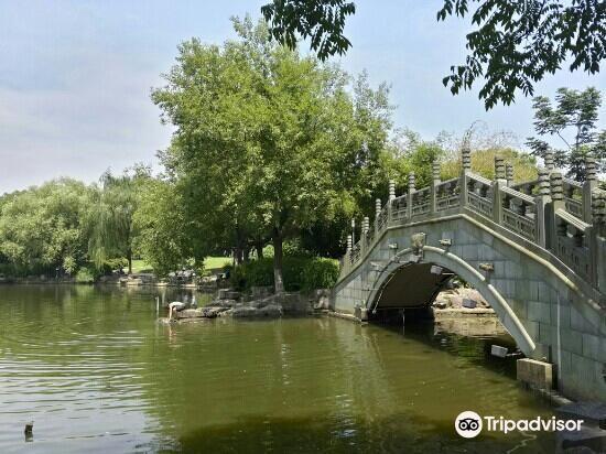 義烏綉湖公園4