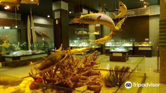 Fantasea Bali Shell Museum