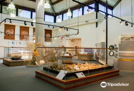 Ralph B. Clark Paleontology Museum