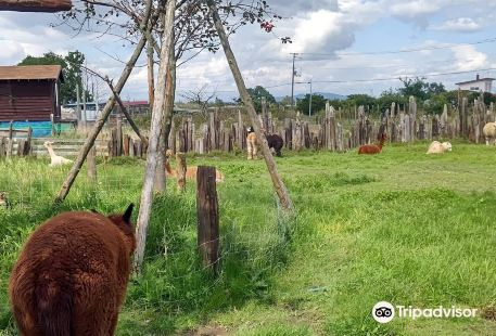 Earth Dream Kakuyama Farm