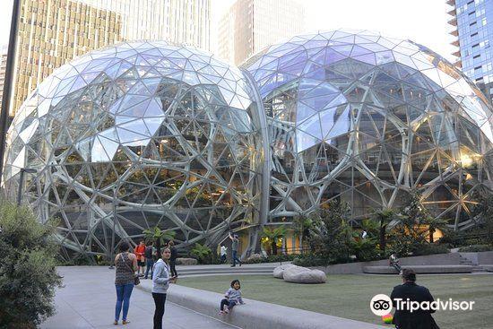 Amazon Spheres2