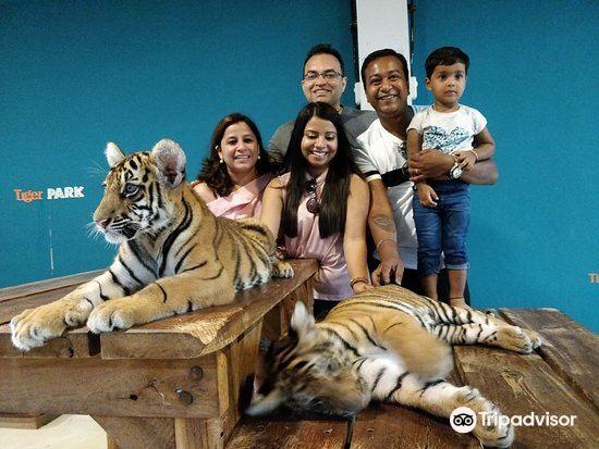 Tiger Park Pattaya1