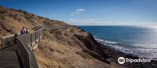 Hallett Cove Conservation Park2