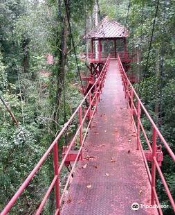 Peninsular Botanic Garden - Thung Khai
