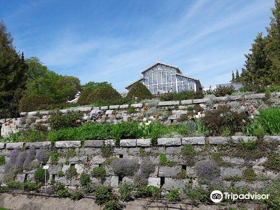 Kaisaniemi Botanic Garden2