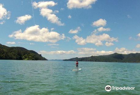 K Bay Kayak & Paddleboard Hire
