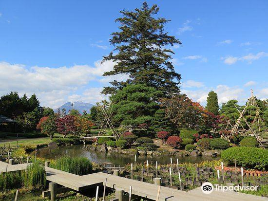 Fujita Memorial Japanese Garden2