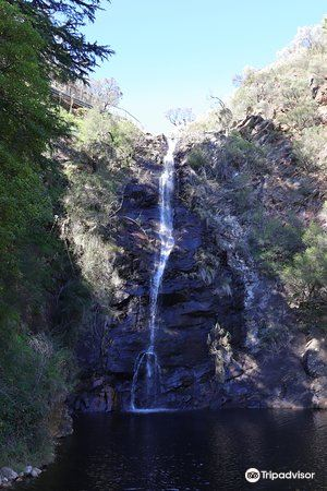 Waterfall Gully4