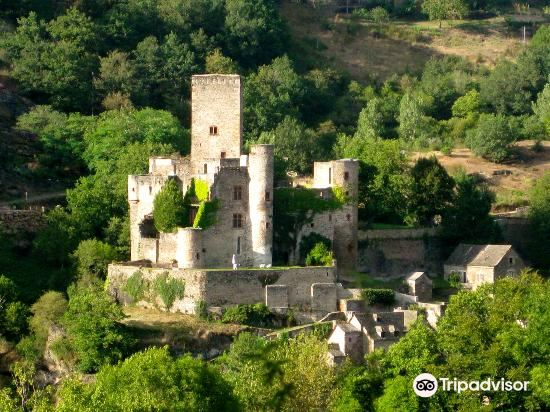 Chateau Belcastel4