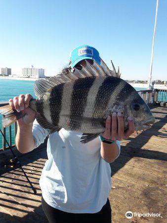 Pensacola Beach Gulf Pier1