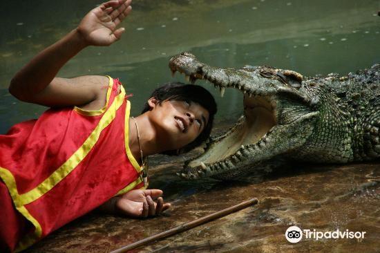 鱷魚農場1