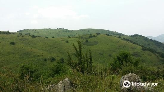 Longnan Xiangshan Mountain Nature Reserve1
