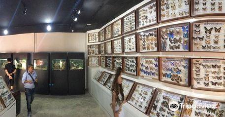 สวนสัตว์และพิพิธภัณฑ์แมลงสยาม