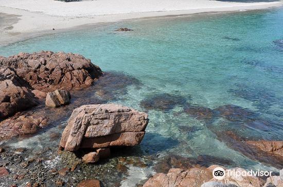 Pulau Redang Marine Park4