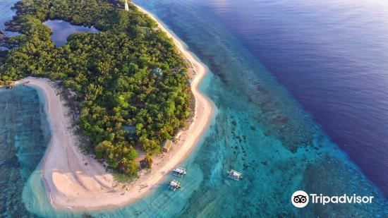 Apo Reef Natural Park3