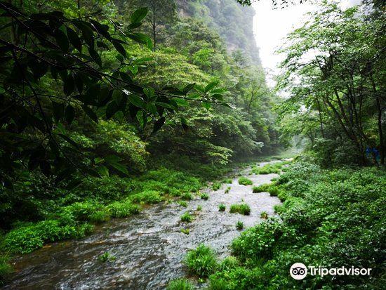 Xiaoxi Brook