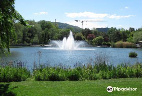 Park im Grunen