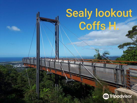 Sealy Lookout