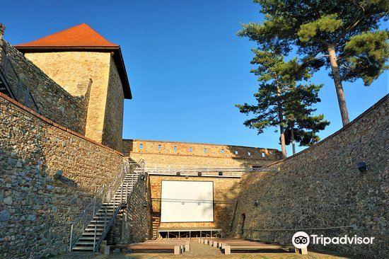 Nitra Castle1