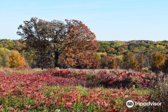 Owens Conservation Park3