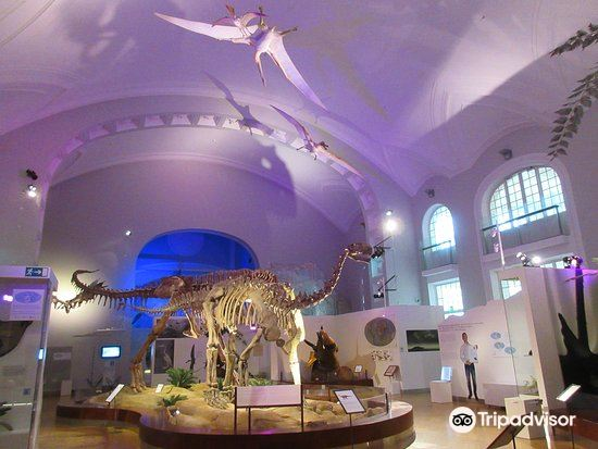 Finnish Museum of Natural History1