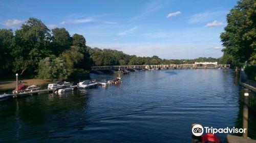 Teddington Lock (Stop M)