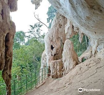 Gunung Senyum Recreational Forest