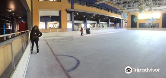 Aguadilla Ice Skating Arena4