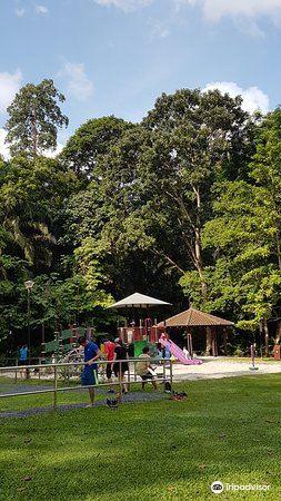 Bukit Batok Nature Park2