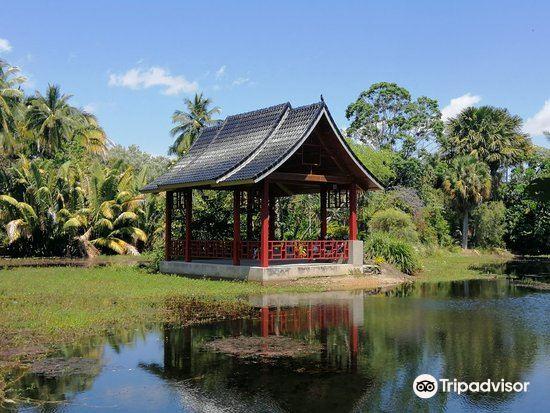 世紀湖植物園1
