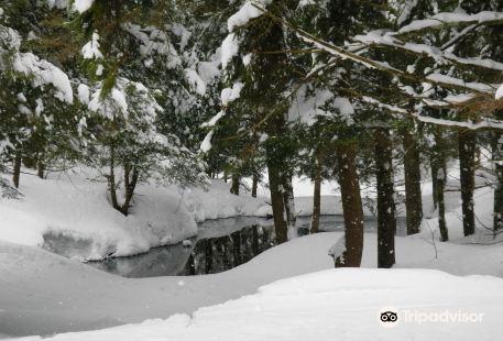 Osceola Tug Hill Ski Center