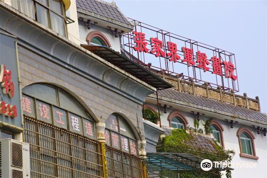Zhangjiajie Junsheng Painting Institute1